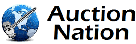 Online Auctions Car Auction and Liquidators  Auction Nation