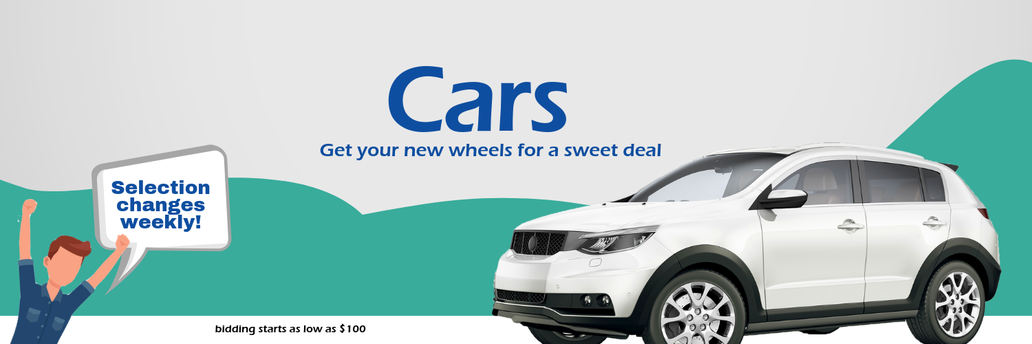 Get the best deals on cars in our auto auction
