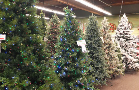 Glendale Az Onsite Christmas Tree Liquidation Auction