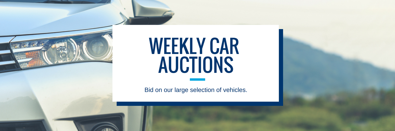 Phoenix Car Auctions